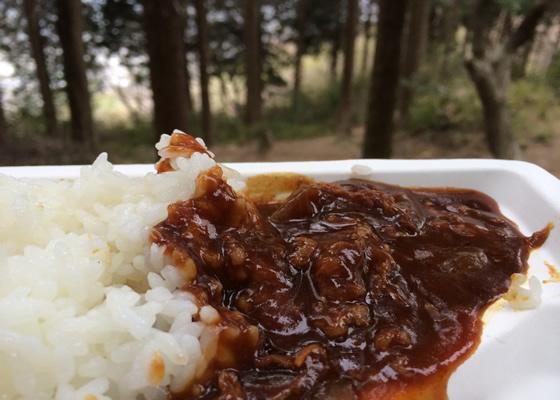 curry2_3.jpg